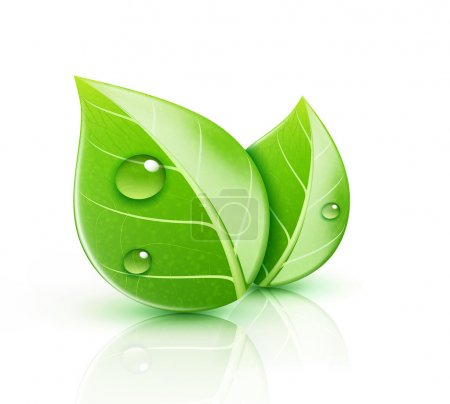 Illustration for Vector illustration of ecology concept icon with glossy green leaves - Royalty Free Image