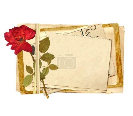 Photo pour Vieilles cartes et rose séchée pour le scrapbooking. Objet isolé sur blanc - image libre de droit