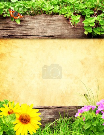 Photo for Summer background with old wooden plank, grass and green leaves - Royalty Free Image