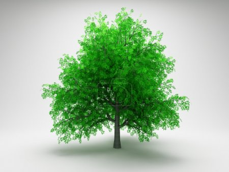 Photo for Green tree on gray background - Royalty Free Image