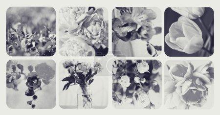 Foto de Collage desaturado con flores - Imagen libre de derechos