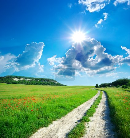Photo for Lane in meadow and deep blue sky. Nature design. - Royalty Free Image