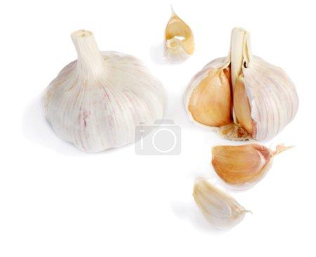 Photo for Garlic isolated on white - Royalty Free Image