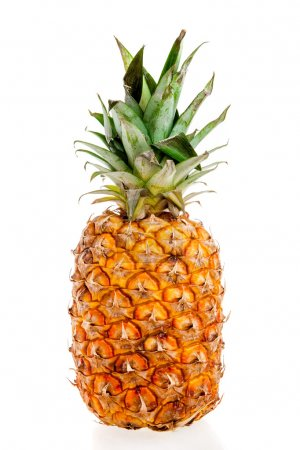 Photo for Pineappleon a white background - Royalty Free Image
