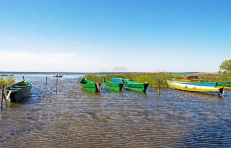 Photo pour Bateaux ancrés en bois dans une petite baie sur le lac Néron, Pereslavl Zaleski, Russie - image libre de droit