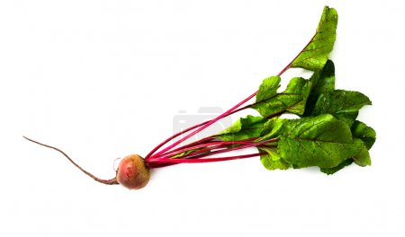 Photo for An image of fresh beet with green leaves - Royalty Free Image