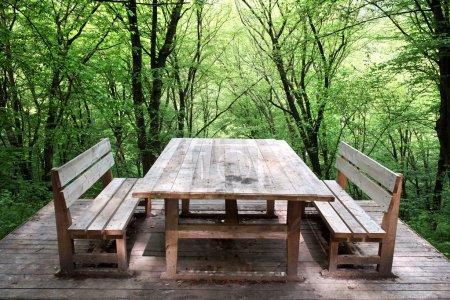 Photo pour Table en bois et deux bancs sur fond de bois vert - image libre de droit
