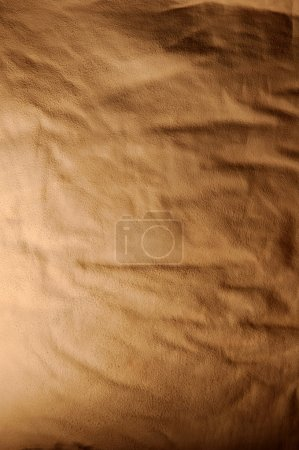 Photo for An image of sheet of skin - Royalty Free Image