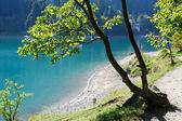 A beautiful blue lake