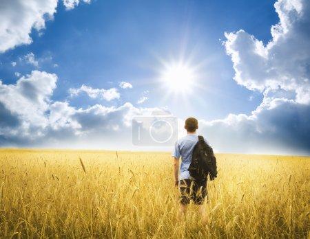 Youn man on yellow wheat meadow. Conceptual design...
