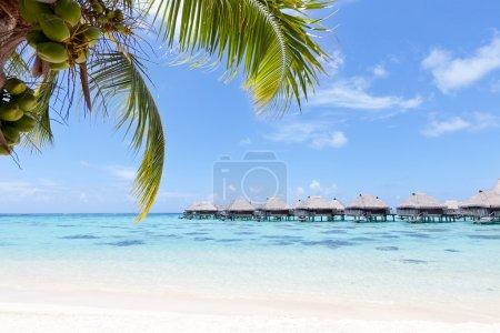 Photo for View from the beach at the overwater bungalows - Royalty Free Image