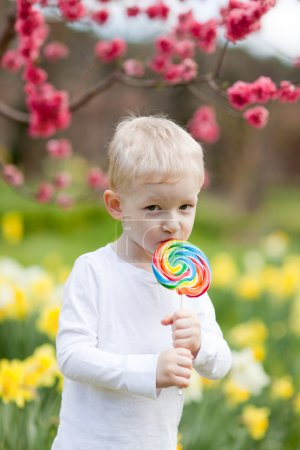 Photo for Cute toddler eating colorful lollipop in a blooming park - Royalty Free Image