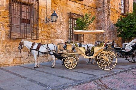Photo pour Cheval et chariot traditionnels à Cordoue Espagne - arrière-plan de voyage - image libre de droit
