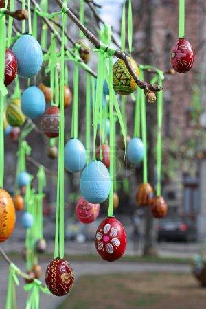 Photo pour Œufs de Pâques en bois accrochés aux branches d'un arbre sur la place - image libre de droit