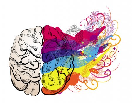Illustration for Vector creativity concept - brain illustration - Royalty Free Image