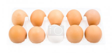 Photo for Pack of eggs isolated on white background - Royalty Free Image