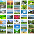 Collage of many nature photos...