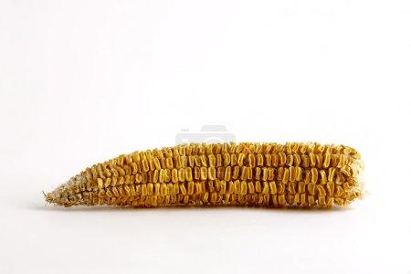 Bad corncob