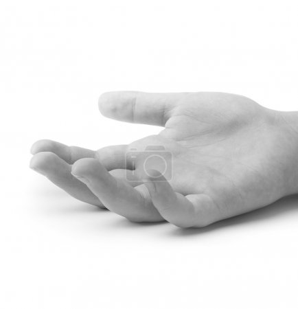 Child hand isolated