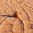 The cracked dry ground in desert of National park ...