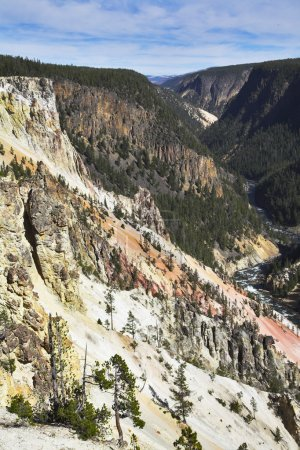 Photo pour Ligneuse canyon de la rivière yellowstone bien connu. plus magnifiques photos des parcs nationaux américains et canadiens, vous pouvez regarder des centaines dans mon portefeuille. Bienvenue! - image libre de droit