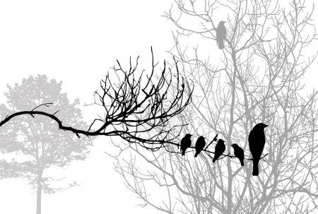 Illustration for Birds silhouette on wood branch, vector illustration - Royalty Free Image