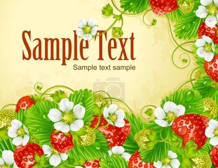 Illustration pour Cadre vectoriel fraise. Baies rouges et fleurs blanches - image libre de droit
