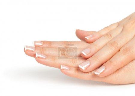 Photo pour Belles femmes mains avec manucure français - image libre de droit