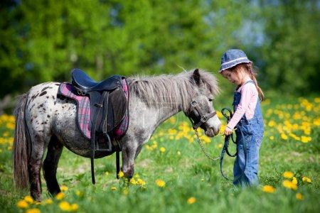 Photo pour Enfant et petit cheval gris avec selle dans le champ au printemps . - image libre de droit