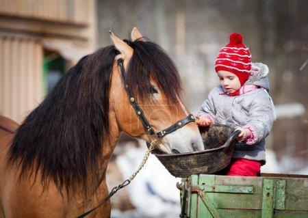 Photo pour Enfant nourrissant un cheval, assis sur une charrette en hiver - image libre de droit
