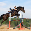 Young girl jumping with bay horse in platz....