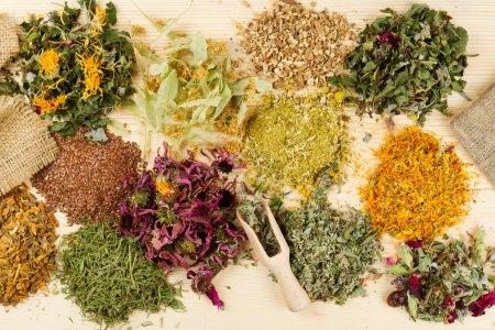 Photo pour Plantes curatives sur table en bois, phytothérapie, vue de dessus - image libre de droit