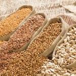 Seeds of mustard, flax, coriander and sunflower ar...