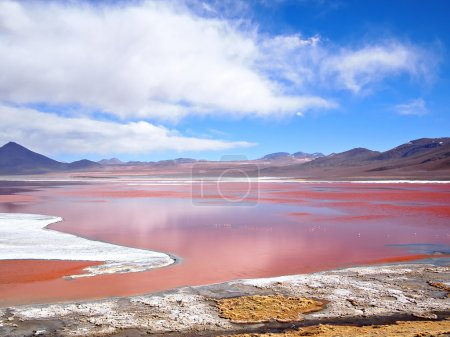 Red Lagoon, Laguna Colorada