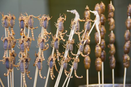 Scorpions and seahorses on sticks