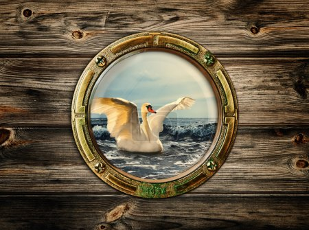 Photo for Porthole with view at swan on the sea - Royalty Free Image