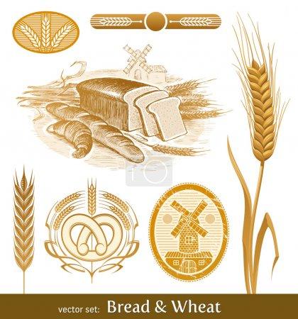 Illustration pour Ensemble vectoriel - pain et blé - image libre de droit