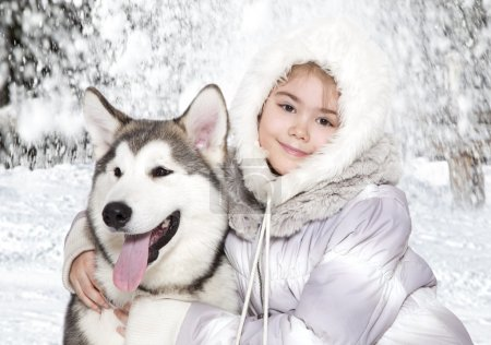 Malamute dog with a girl