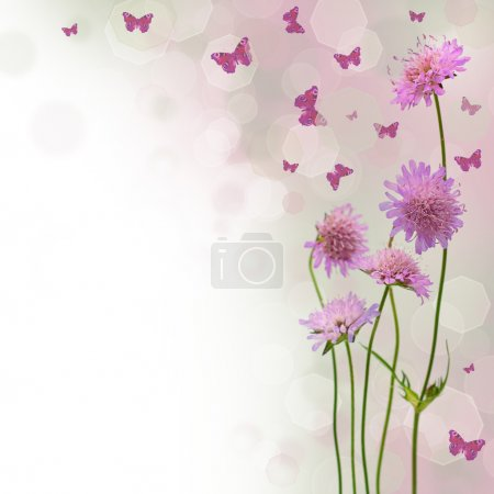 Photo for Blossom background - blurred floral border with flowers and butterfly, summer fantasy concept (shallow depth of field) - Royalty Free Image