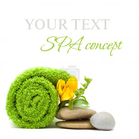 Spa concept - stones, green leaves and flower isolated