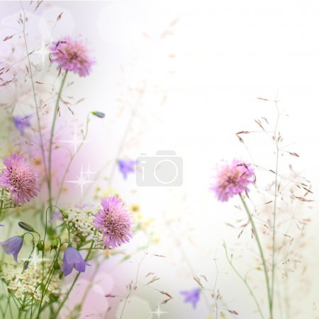 Photo for Beautiful pastel floral border beautiful blurred background (shallow depth of field) - Royalty Free Image