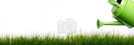 Photo pour Extra large bande horizontale de gazon et jardin outils sur fond blanc. - image libre de droit