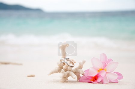 Photo for Two wedding rings on coral in front of the seaside - Royalty Free Image