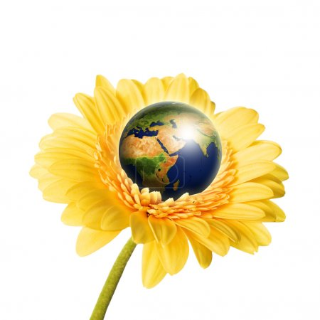 Earth in flower isolated over white