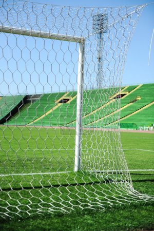 Goal net and white line in a soccer field on stadium