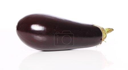 Eggplant over white background