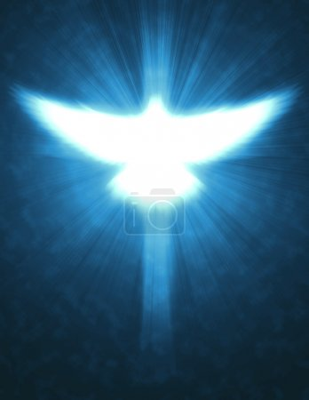 Photo for Shining dove with rays on a dark golden background - Royalty Free Image