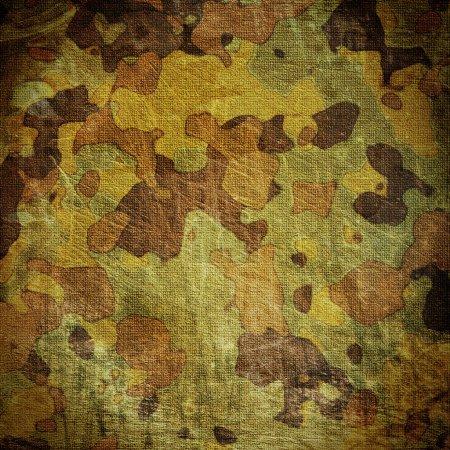 Foto de Lúgubre camuflaje natural s/lienzo - Imagen libre de derechos