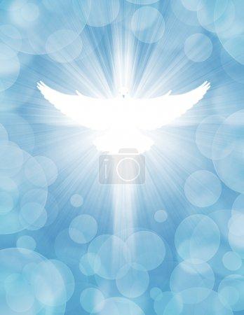 Foto de Paloma brillante con rayos sobre un fondo azul claro - Imagen libre de derechos