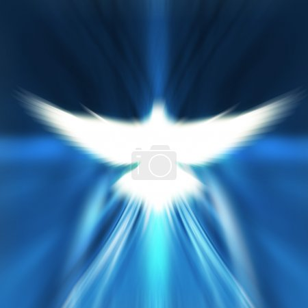 Photo pour Brillant colombe avec rayons sur fond doré foncé - image libre de droit